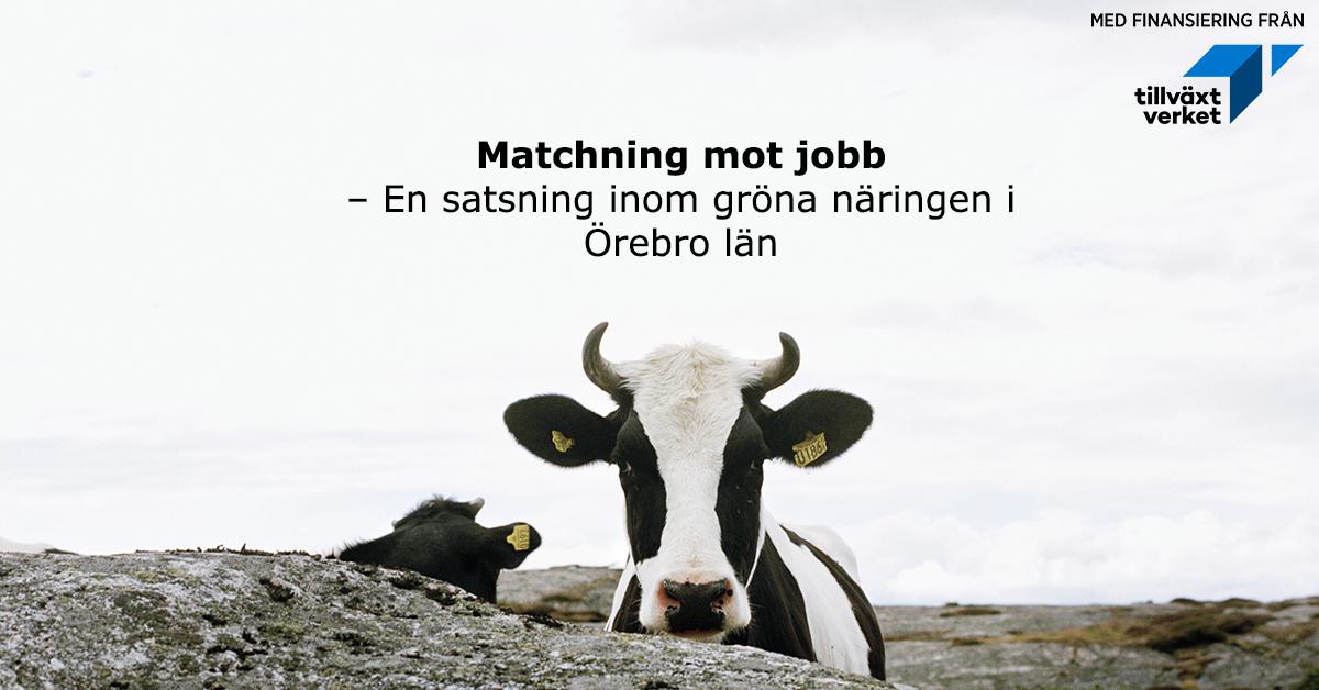 Matcning mot jobb. Bildkälla: Johnér Bildbyrå