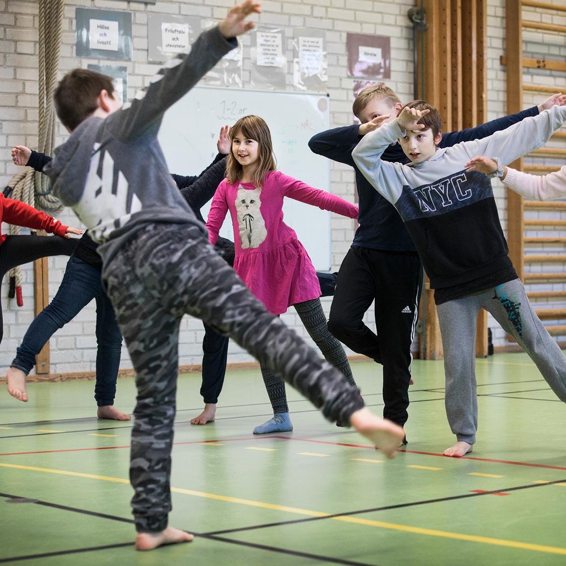 Kulturgarantin, Dans i skolan