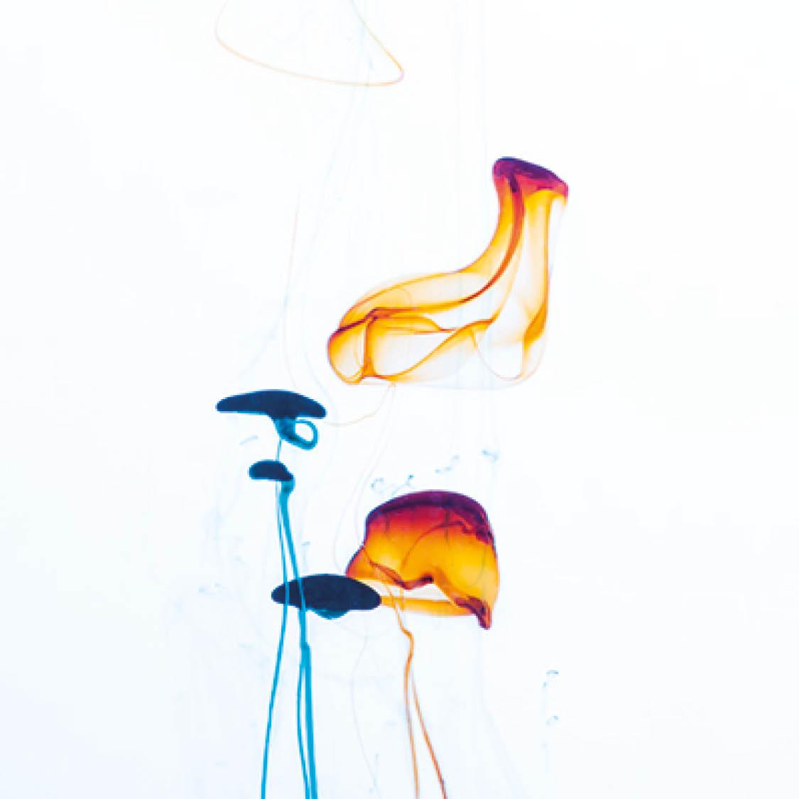 Anbudsskolor - bild på färgdroppar